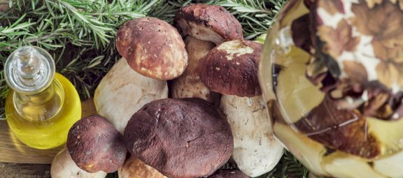 Porcini Mushrooms and delicacies since 1901